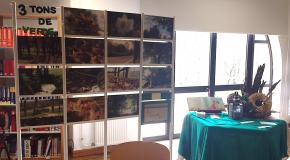 Exposição Biodiversidade